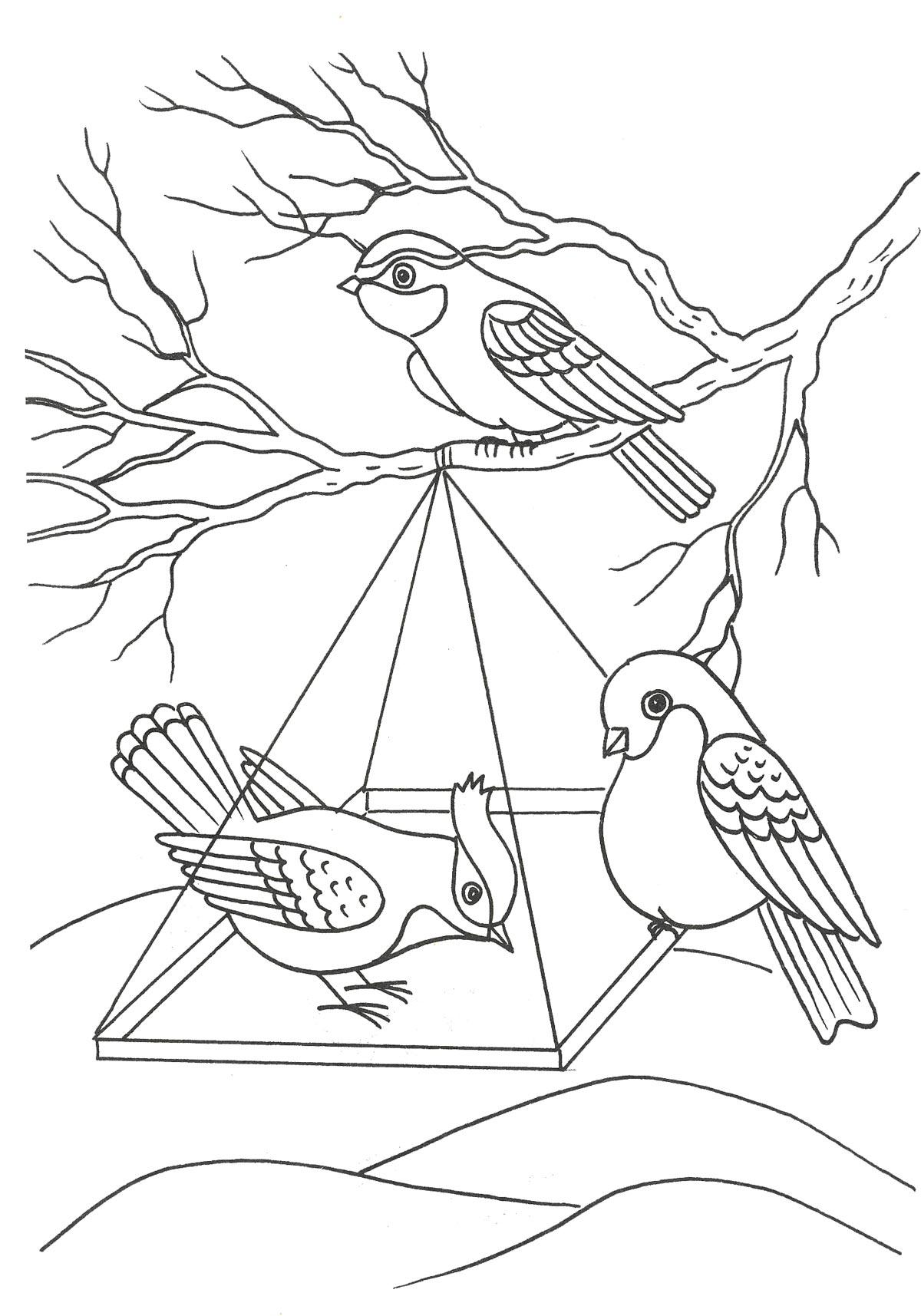 птицы на кормушке картинки рисунки