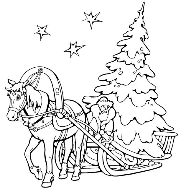 Дед везет большую елку Раскраски на тему зима