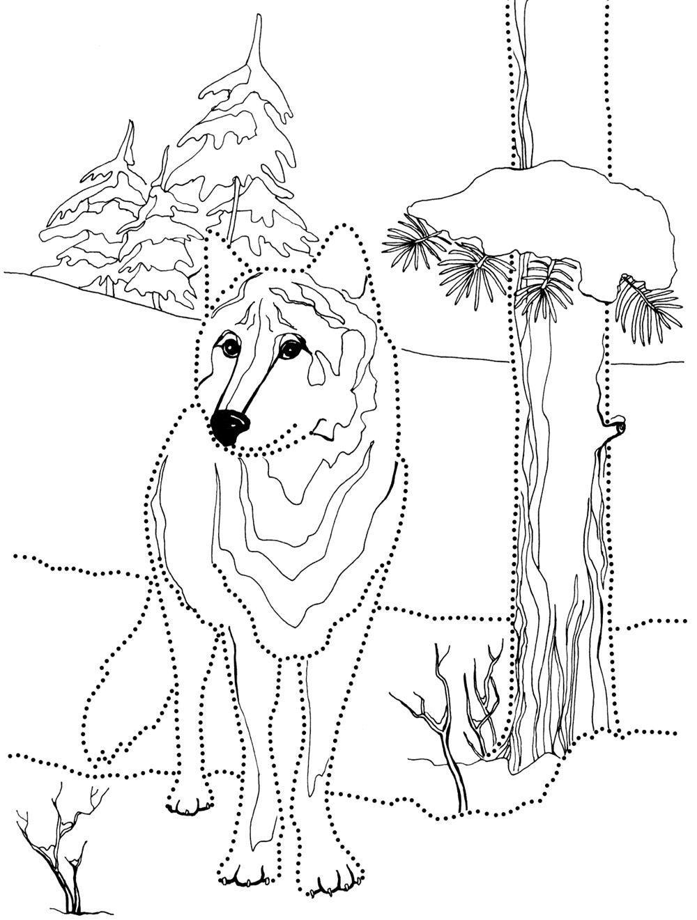 Волк в лесу Раскраска зима пришла