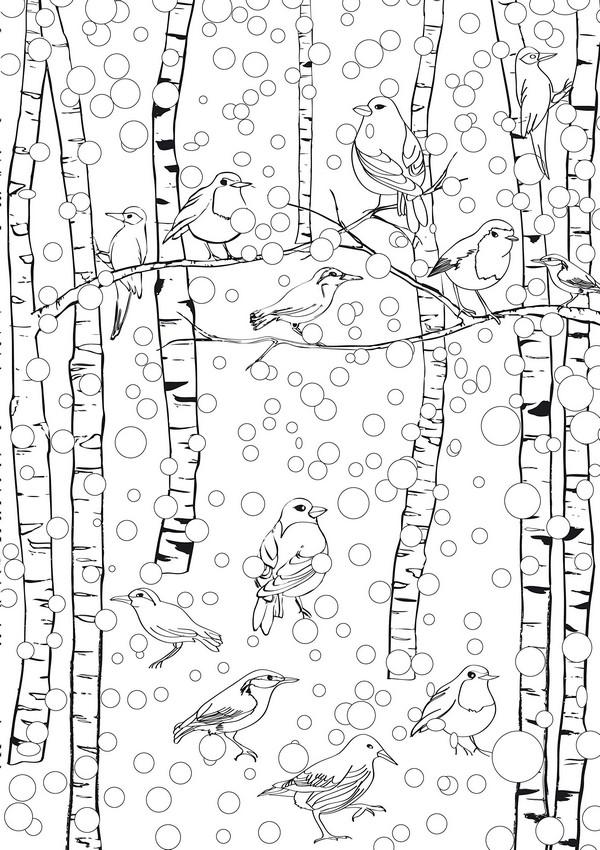 Птицы на березах под падающим снегом Детские раскраски зима распечатать