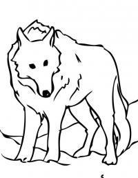 Волк Раскраски про зиму для детей