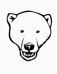 Полярный медведь Раскраски про зиму для детей
