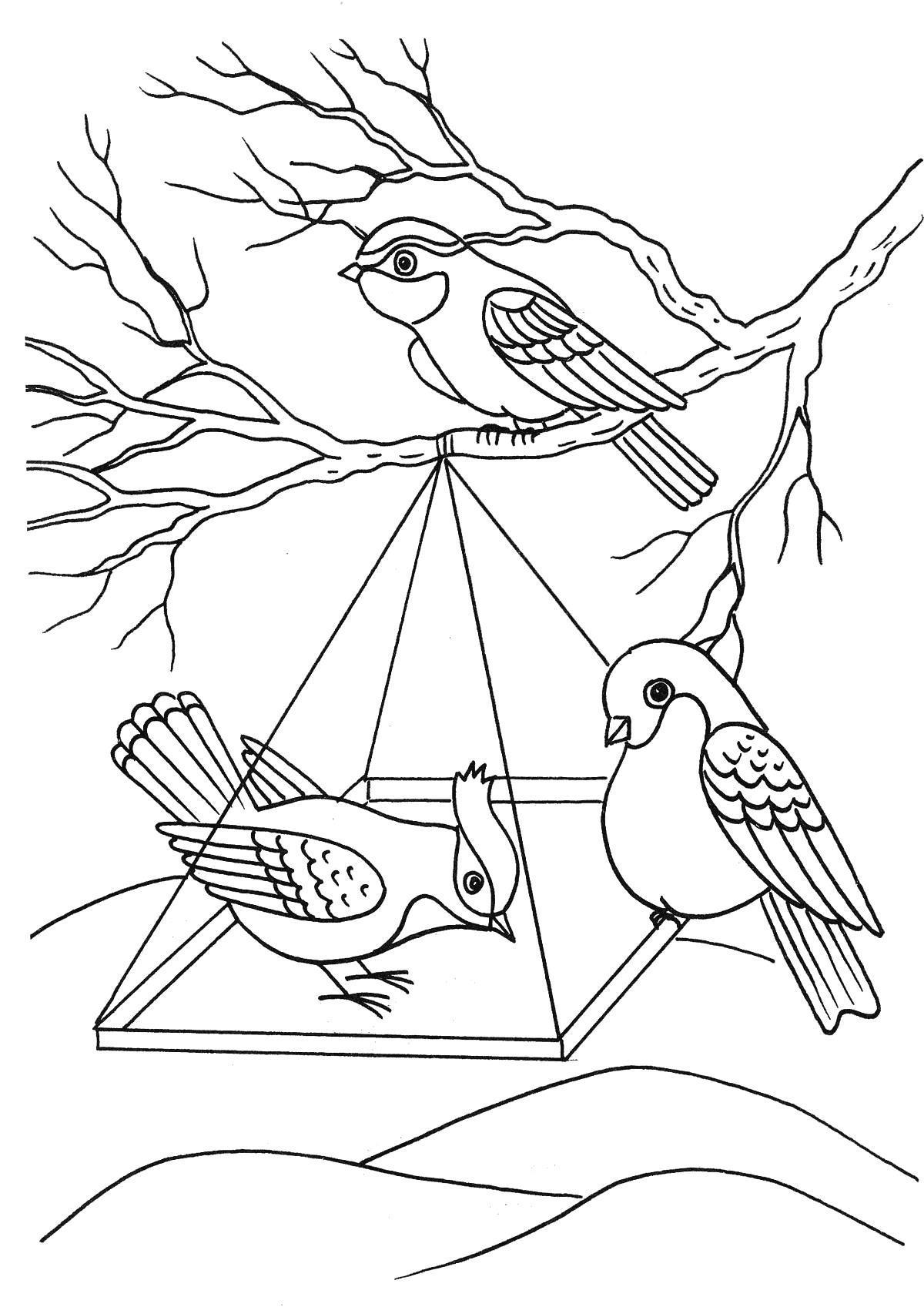 Для малышей Раскраски про зиму для детей