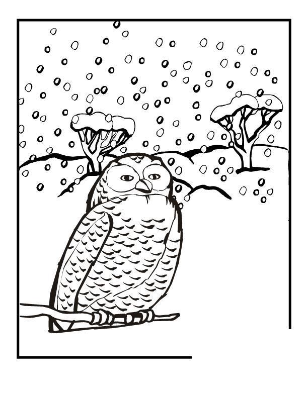 Сова снегом Раскраска зима распечатать