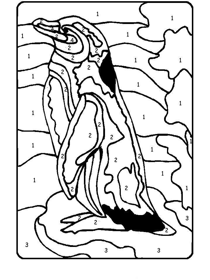 Пингвин Зимние раскраски для девочек