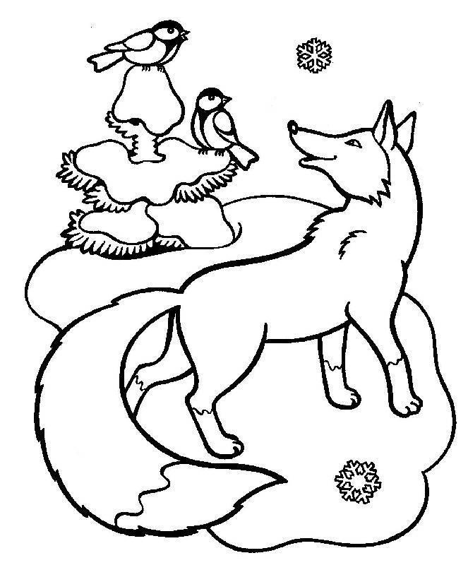 Зима в лесу, лиса смотрит на птиц Детские раскраски зима распечатать