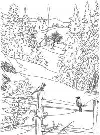 Из трубы одинокой избушки в лесу идет дым Детские раскраски зима распечатать