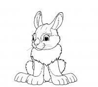 Заяц беляк Детские раскраски зима распечатать