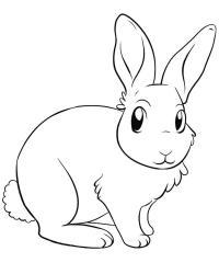 Заяц с длинными ушами Раскраска зима распечатать