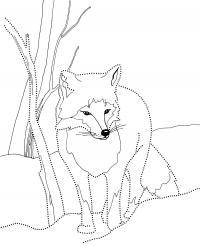 Лиса Зимние рисунки раскраски