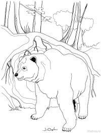 Медведь Зимние рисунки раскраски