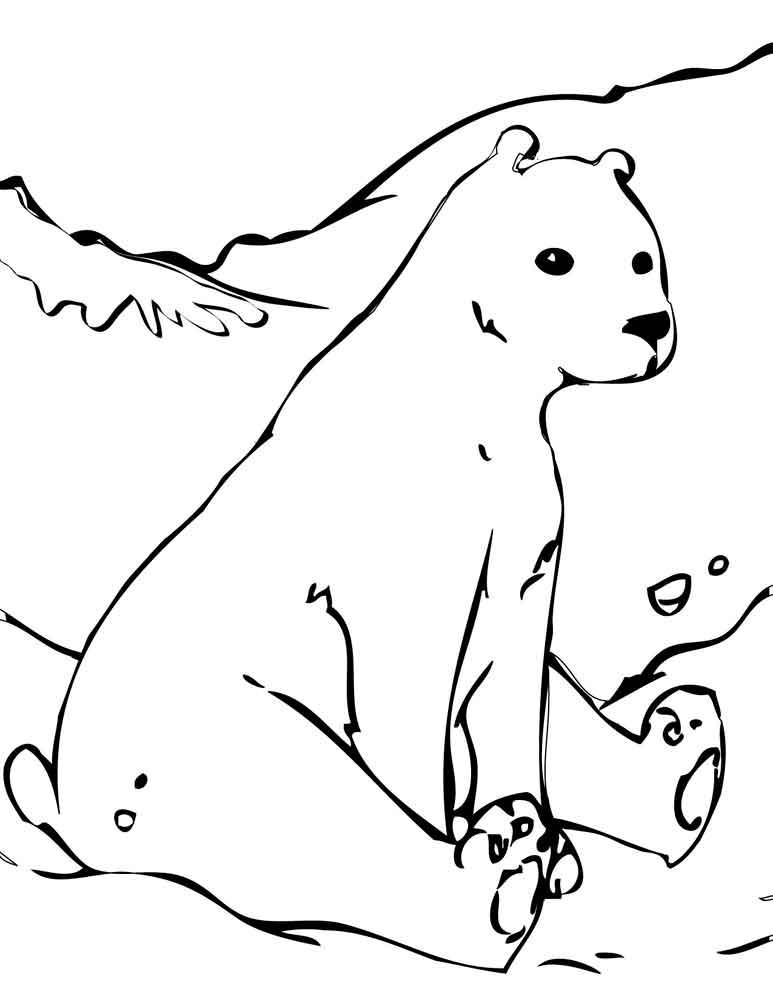 Северный мишка катается с горы Зимние раскраски для малышей