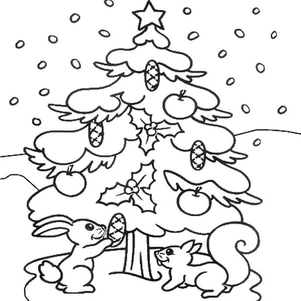 Белочки наряжают елку шишками и яблоками Детские раскраски зима распечатать
